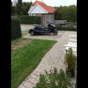 Jinlun Trike til salg på MCsalg.dk